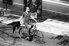 Spring © Inge Hoogendoorn (ingehoogendoorn) Tags: bike bikes dutchbikes dutchbike fiets fietsen fietser blackandwhite blacknwhite streetphotography straatfotografie venuslaan