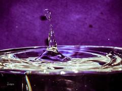 P4060465 (Tornado H. Rigas) Tags: waterdrops waterart macro watercolor waterartdrops drips drops watermacro