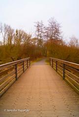 Eine Brücke im Nachmittagslicht des Frühlings (Bernsteindrache7) Tags: spring sony alpha 100 color tree build bridge brücke outdoor park