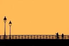 Golden hour at Paris's Notre Dame bridge (jeffclouet) Tags: paris france europe capital nikon nikkor d7100 golden orange bridge puente pont urbain urban urbano cuidad ville city people personas personnes downtown street rue calle luz lumiere light graphic graphique grafico couleur color colour shadow silhouette minimal