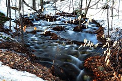 2017_0410Rushing-Run-Off0001 (maineman152 (Lou)) Tags: spring springrunoff springmelt brook stream flowing flowingwater nature naturephoto naturephotography landscape landscapephoto landscapephotography longexposure longexposurephoto longexposurephotography april maine