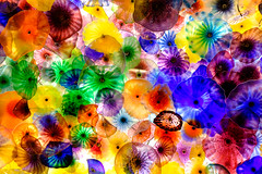 Glass Ceiling #02 (Rice Bear) Tags: bellagio chihuly lasvegas ceiling colors glass nevada unitedstates flowers