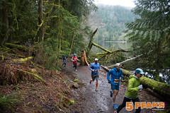 2017 RS 5 Peaks BC Alice Lake Web-141 (5 Peaks Photos) Tags: 20175peaksbc 2061 2104 5peakstrailrunningseries alicelakeprovincialpark robertshaerphotographer running squamish trailrunning