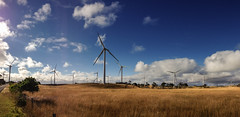 windmill pano (damdiv) Tags: pano panorama windturbines windpower