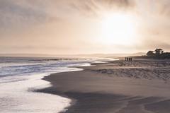 Limantour Beach Sunset (Matt McLean) Tags: bayarea beach california coastal goldenhour landscape limantour ocean pacific people pointreyes sunset tidal inverness unitedstates us