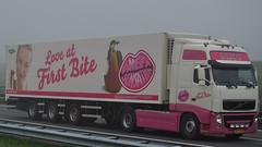 NL - Dijco >The Greenery Sweet Sensation< Volvo FH GL03 (BonsaiTruck) Tags: volvo sweet camion greenery trucks fh sensation lorries lkw gl02 dijco