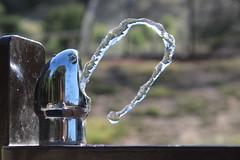(Ty Ho) Tags: california park reflection water shot walnutcreek waterfountain quick liquid drinkingfountain castlerock inmotion mountdiablo northgate fastshutterspeed stillmotion