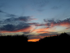 sunset (rospix) Tags: uk pink blue trees sky orange cloud nature weather silhouette june wales clouds countryside 2014 geoengineering rospix