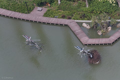 IMG_6885_DxO.jpg (Cthonus) Tags: geotagged restaurant hotel singapore marinabay gardensbythebay marinabaysands skyon57