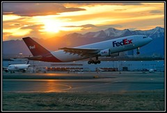 N726FD FedEx - Federal Express (Bob Garrard) Tags: airbus express fedex anc federal a300 panc n726fd