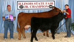 """Grand Champion Performance Aged Cow IL State Fair '09 • <a style=""""font-size:0.8em;"""" href=""""http://www.flickr.com/photos/25423792@N05/14436039292/"""" target=""""_blank"""">View on Flickr</a>"""
