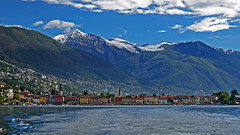Ascona (upsa-daisy) Tags: