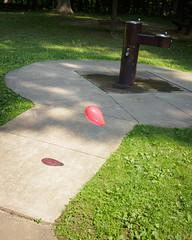 Float (coneslayer) Tags: ohio balloons unitedstates sidewalks brecksville panasoniclumix20mmf17asphii