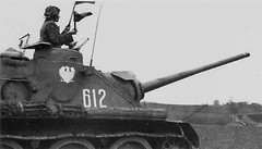 Polish SU-85M, Germany 1945