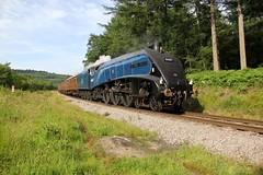 LNER 60007 'Sir Nigel Gresley' (BillyGoat75) Tags: canon pacific locomotive steamengine levisham nymr northyorkshiremoorsrailway lner sirnigelgresley 60d 60007 classa4 platelayerscottage