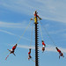 Voladores de Papantal