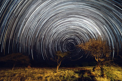 Star Trails (bobbybradley) Tags: africa longexposure nightphotography stars timelapse wideangle namibia startrails ccf milkyway southernhemisphere cheetahconservationfund otjiwarongo nikond600 rokinon14mm
