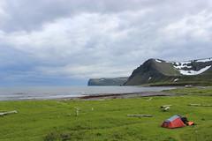 Camping site of Hælavík, Hornstrandir Nature Reserve (Westfjords)