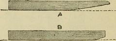 Anglų lietuvių žodynas. Žodis linearise reiškia linizuoti lietuviškai.