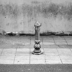 solitarias (joe.laut) Tags: people bw square blackwhite istanbul mai sw schwarzweiss 2014 incoloro joelaut