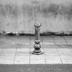solitarias (joe.laut) Tags: people bw square blackwhite istanbul mai sw schwarzweiss 2014 incoloro joelaut