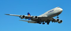 Boeing 747-800 (sfPhotocraft) Tags: plane aircraft jet landing boeing lax lufthansa boeing747 747 jumbojet 2014 klax dabym boeing747800