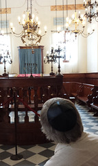 Synagogue, Pitigliano, IT_164129(1) (Patterns and Light) Tags: italy synagogue tuscany yarmulke 2014