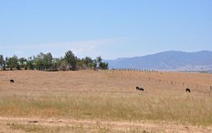 Mt Moobi off Yarrandi Rd, Scone NSW