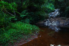 Silent Stream (iminfinite) Tags: river stream silence ooty waterscape kotagiri