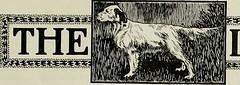 Anglų lietuvių žodynas. Žodis dog-fox reiškia n zool. lapinas lietuviškai.