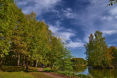 Oakery near the pond (МирославСтаменов) Tags: petersburg sestroretsk russia pond dubki oak quercus cirrus sky autumn fall water lake path park tree oakery grove
