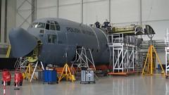 C-130E Hercules (Lukasz Pacholski) Tags: polish air force c130e hercules lockheed martin