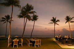Dinner on the lawn (rustyproof) Tags: sri lanka colombo galle face hotel lawn evening sunset sky clouds palm tree palms trees dusk