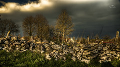 Orage à La Châtelaine (Fred&rique) Tags: lumixfz1000 photoshop raw jura orage mur muret pierres ciel soleil rayons nuages noir arbres paysage nature