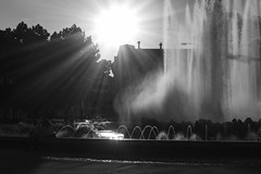 Hochstrahlbrunnen (giovanibr) Tags: viena vienna austria street girls women talk chat chafariz fountain fountaine backlight sun light sunset afternoon hochstrahlbrunnen schwarzenbergplatz square schwarzenberg