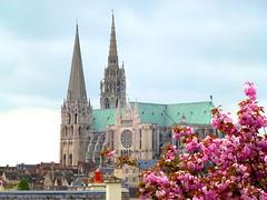 De beaucoup plus près... / Much closer... (FloDL) Tags: chartres cathédrale printemps pâques jardinsdesakuraï spring garden happyeaster
