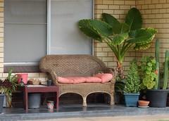 Comfy Veranda (mikecogh) Tags: glenelg comfortable cosy veranda sofa couch wicker potplants