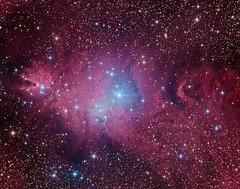 Fox Fur, Unicorn, and Christmas Tree (Daniele Malleo) Tags: nebula ngc2244 cone unicorn