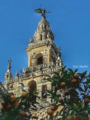 Giralda (Jose Abadin) Tags: sevilla seville giralda andalucia españa spain sky blue green canonsx240 canon city travel holydays