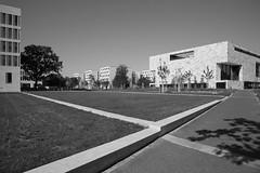 Neue Goethe-Universität (Neue Eule) Tags: frankfurtammain universität campus schwarzweis monochrom bw architektur germany