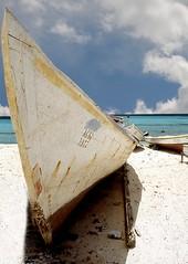 BARCA (ADRIANO ART FOR PASSION) Tags: venezuela losroques spiaggia playa beach barche boat prua