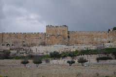 010 Golden gate_001_ (Teodor Ion) Tags: terrasanta gerusalemme montesion israeljerusalem templemount oldcityofjerusalem
