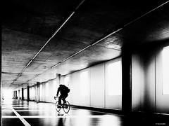 stripes ride (René Mollet) Tags: street streetphotography shadow silhouette streetart streetphotographiebw strip strasse blackandwhite bw blackwhite renémollet basel backlight monochromphotographie monochrom