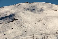 Never ending ski slopes (mzagerp) Tags: montagne mountain alpes france isère savoie muzelle pic grave meije rateau snow neige ski snowboard pistes slope