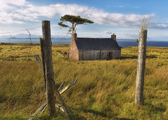 Once a Home.. (Harleynik Rides Again.) Tags: croft abandoned ruin fence friday highlands scotland tree harleynikridesagain fencefriday