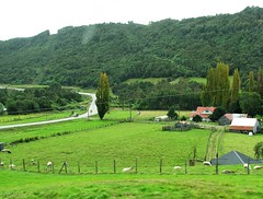 Campos de Chiloe,camino Castro Quellon,Chile (Gabriel mdp) Tags: isla grande chiloe paisaje caminos ruta castro quellon naturaleza verde pobladores landscape campos contrastes