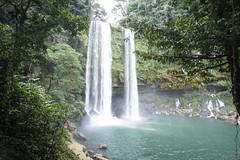 Palenque Misol Ha Falls