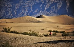 Ocean of sand. (France-♥) Tags: 808 quote citation dvnp deathvalley california sand sanddunes nature deathvalleynationalpark usa landscape