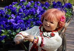 Sanrike ... auch ich mache blau ... (Kindergartenkinder) Tags: blumen stiefmütterchen frühling gruga essen grugapark dolls himstedt annette kindergartenkinder sanrike