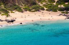 Beach Time (Tom Fenske Photography) Tags: hawaii water swimming ocean wild